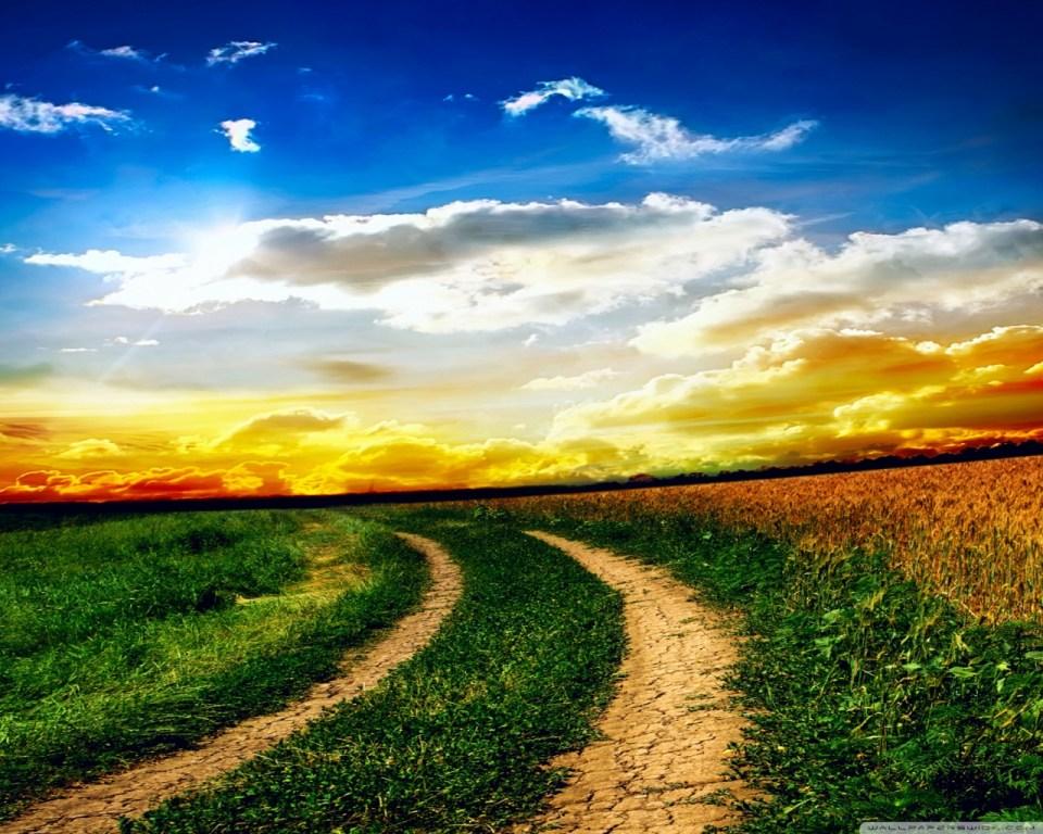 my path 1