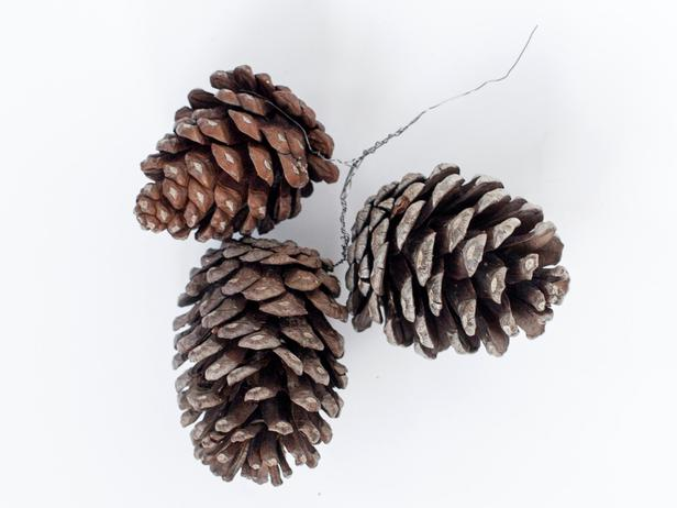 Original-TomKat_Christmas-pine-cone-gallery-step3_h_lg