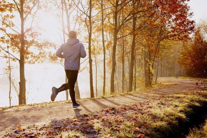 В Рязани увеличилась численность занимающихся физкультурой и спортом