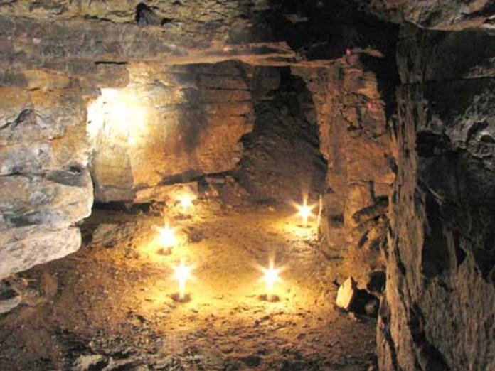 Редкие летучие мыши облюбовали каменоломню в Рязанской области