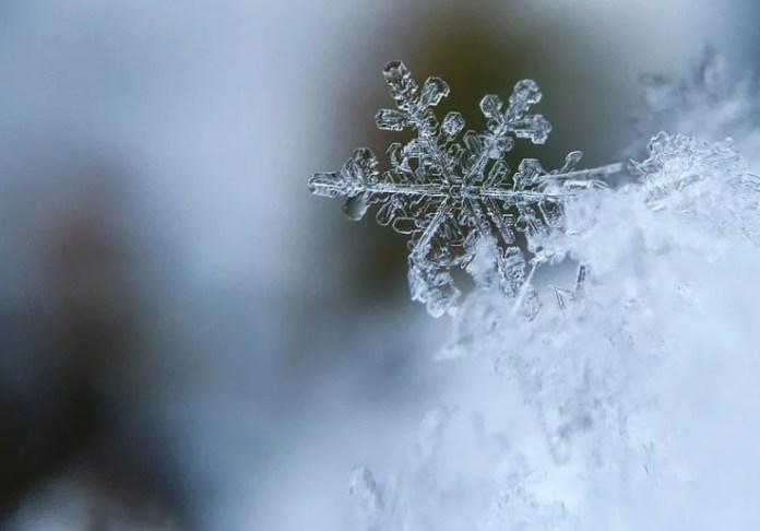 Рязанцы поделились фото первого снега. Instagram-обзор