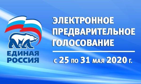 В Рязанской области стартовало электронное предварительное голосование