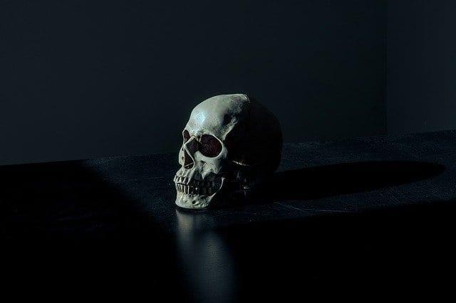 Дачница нашла человеческий череп в купленном чернозёме