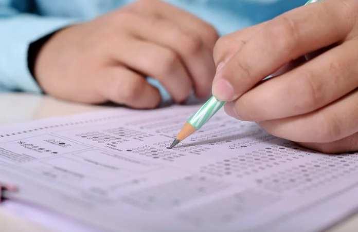 Депутат Госдумы предложила отменить всероссийские проверочные работы для школьников