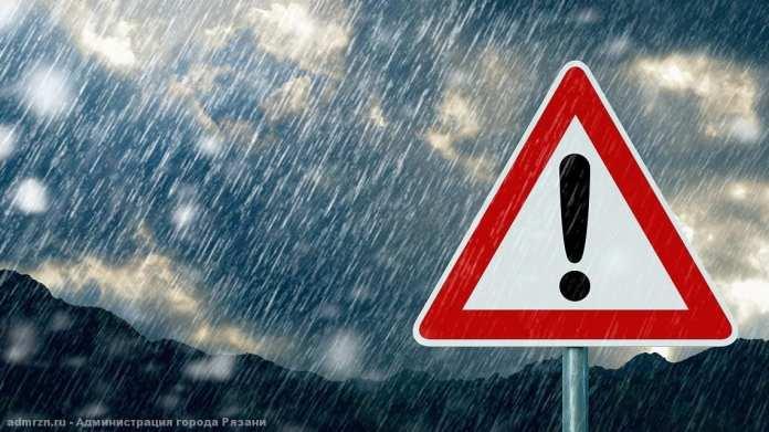 До +13 градусов и ветер ожидаются в Рязанской области 21 апреля