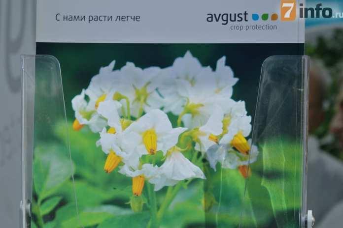 «Август» приглашает к сотрудничеству рязанских сельхозпроизводителей