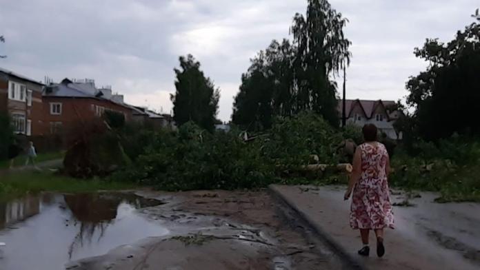В Рязанской области устраняют последствия урагана