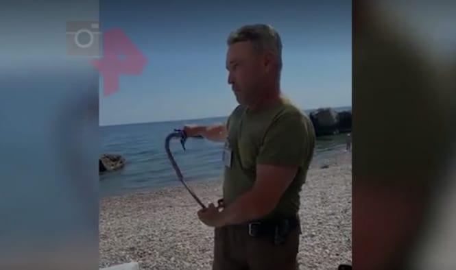 Раскрыты детали нападения «охранника пляжа» с нагайкой на семью в Крыму