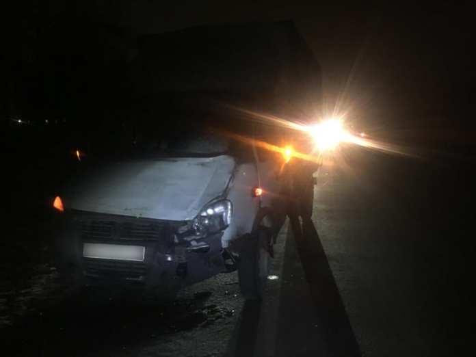 """В Рязани на трассе М-5 """"ГАЗель"""" насмерть сбила пешехода"""
