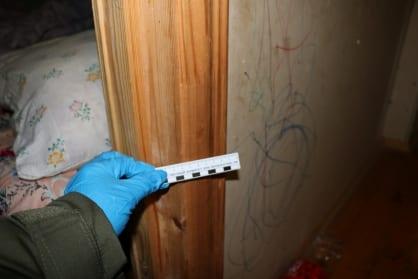 В Путятинском районе 37-летний москвич чуть не убил 3-летнего пасынка
