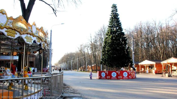 В Рязани установят 30 новогодних ёлок