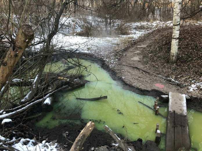 В Соловьиной роще в Смоленске появилось зеленое озеро