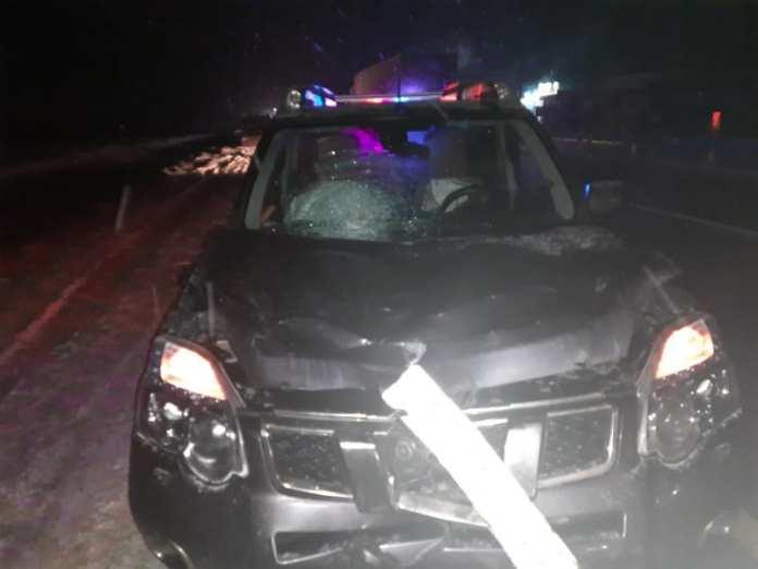 В Михайловском районе иномарка сбила пешехода