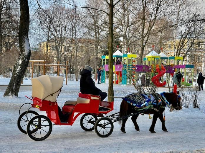 В мэрии Рязани рассказали о новогодних фотозонах в Наташкином парке