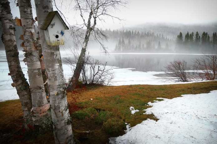 Во вторник в Рязанской области ожидается гололед и сильный ветер