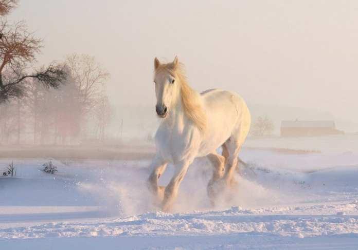 В Рязанской области похолодает до -34 градусов