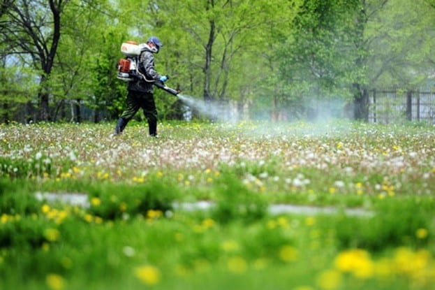 Три парка в Белгороде обработают от клещей