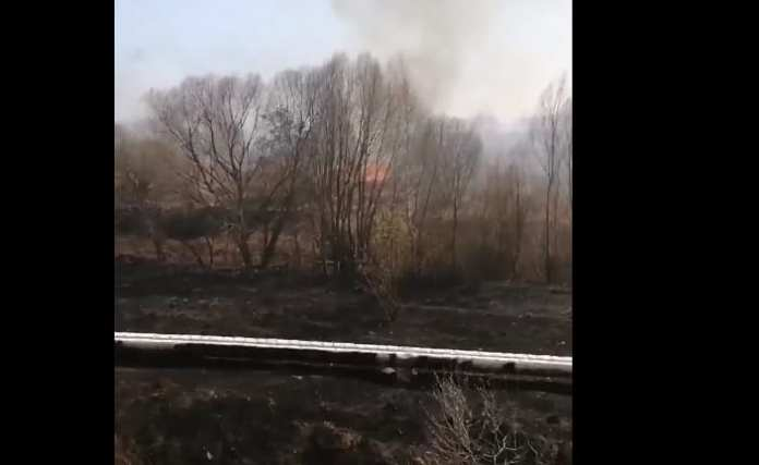 В Дашково-Песочне загорелась трава
