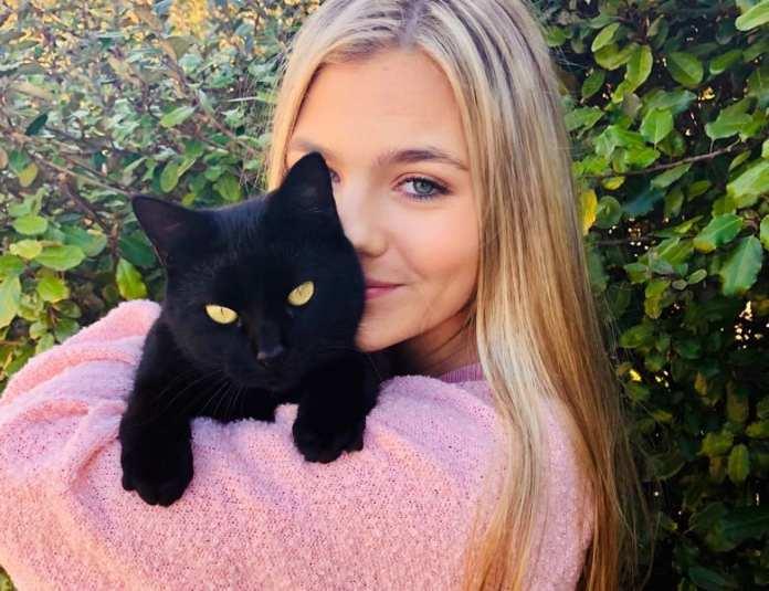 Опрос от Мамбы: фото с котом вызывает желание познакомиться?