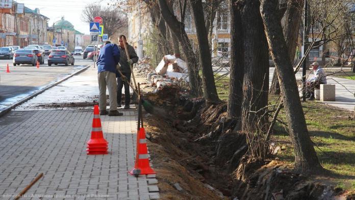 Подрядчик повредил корни деревьев при ремонте ограды Верхнего городского сада