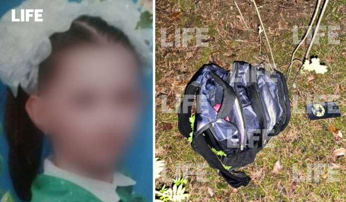 Экспертиза доказала причастность «нижегородского Чикатило» к убийству 12-летней девочки