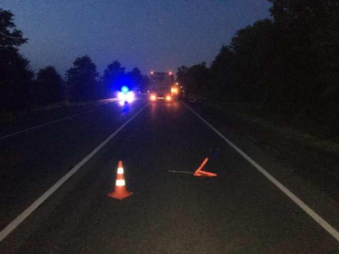 На трассе М-5 в Рязанской области грузовик насмерть сбил пешехода