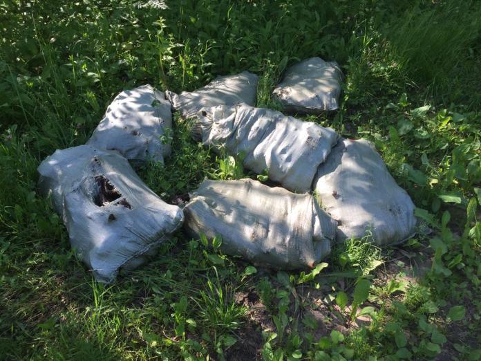 В посадке Хамбушево обнаружены гниющие останки скота
