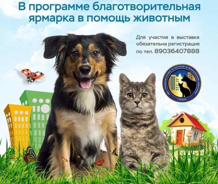 Выставка собак и кошек «Пойдём домой» пройдёт в рязанском Лесопарке
