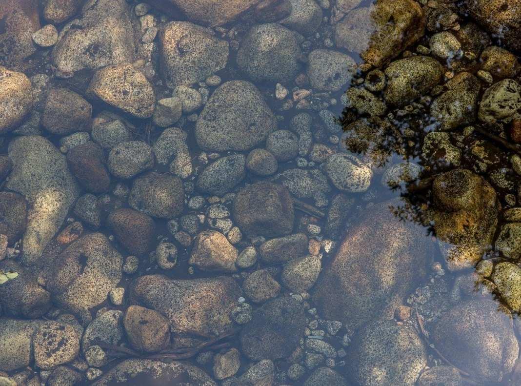 В Костромской области пьяная женщина заставила девочку переплыть реку в мороз