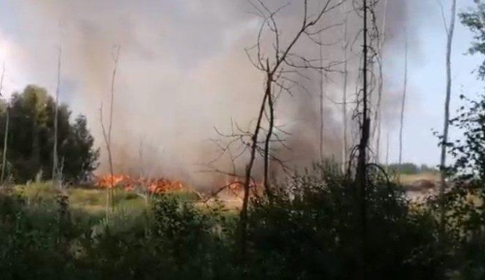 В Туме загорелась свалка