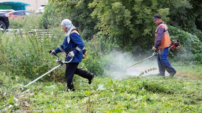 Рязанцам грозят штрафы за мусор возле своих домов