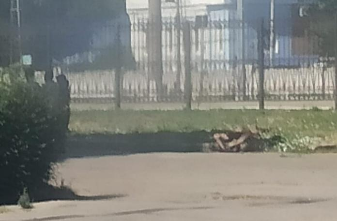 У вокзала в Рязани лежит труп — очевидец