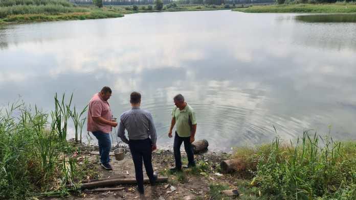 Депутат областной Думы отреагировал на сообщение о гибели рыбы в реке Дубянка