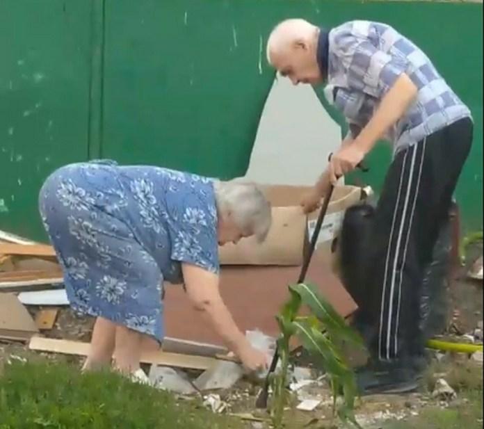 Убивающие котят молотком пенсионеры попали на видео