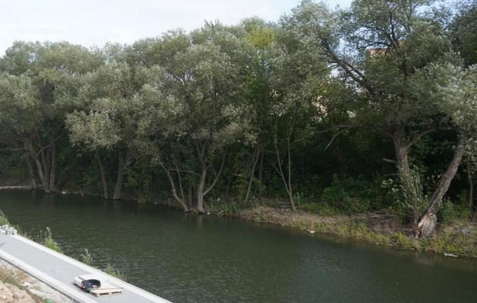 В рязанской Горроще очистили берега ручья