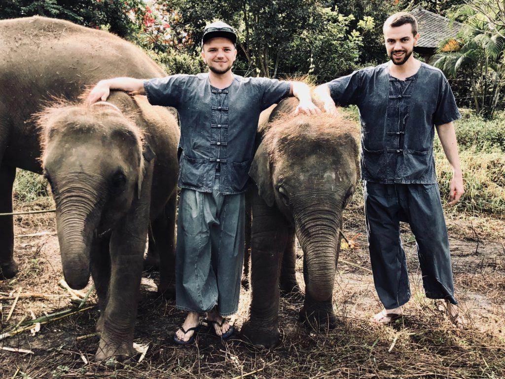 Elefantencamp in Chiang Mai, Thailand