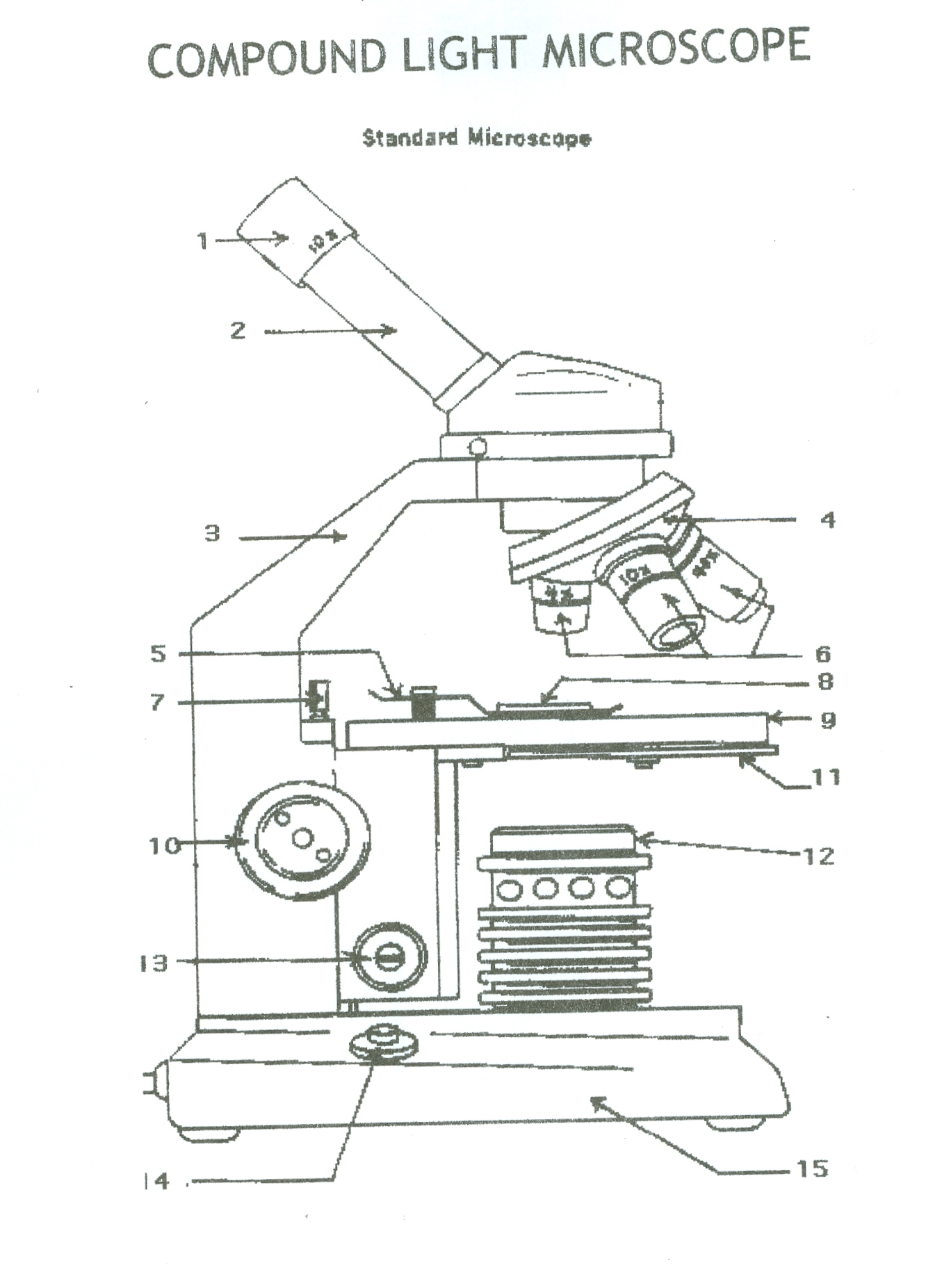 compound microscope diagram and functions 04 chevy silverado bose radio wiring 7 red team