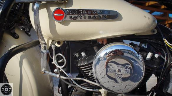 Domen_Harley-4