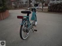 Rat_moped-20