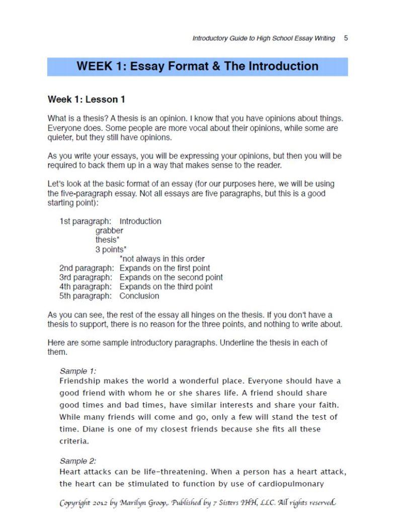 examples of high school essays high school essay writing