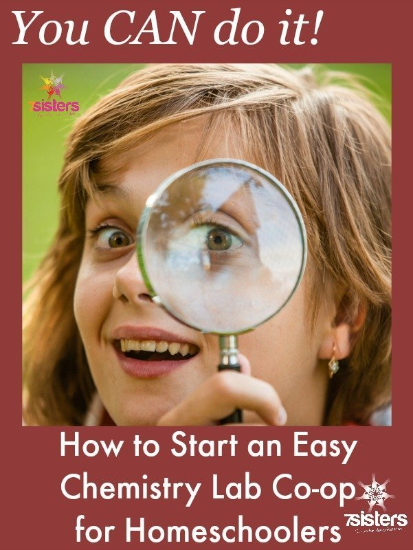 Easy Chemistry Lab Co-op for Homeschoolers
