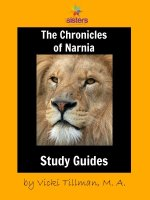 Chronicles of Narnia Literature Study Guides: Complete Set for High Schoolers