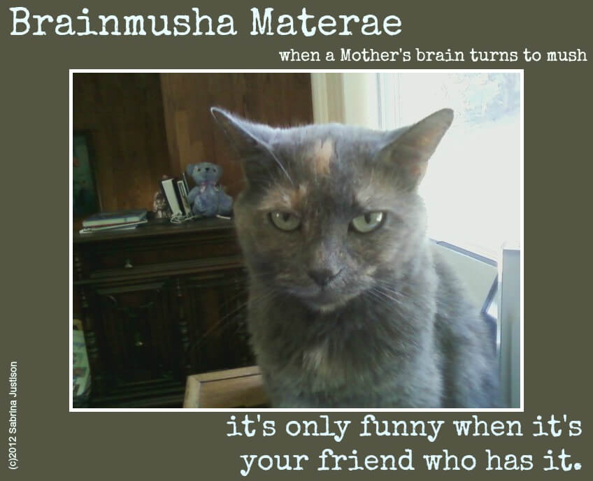 Brainmusha Materae: Moms, Are You Taking Care of YOUR Brain? 7SistersHomeschool.com