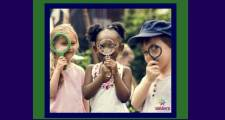 Homeschool Co-Op Ideas for Elementary and Middle School