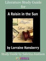 A Raisin in the Sun Study Guide