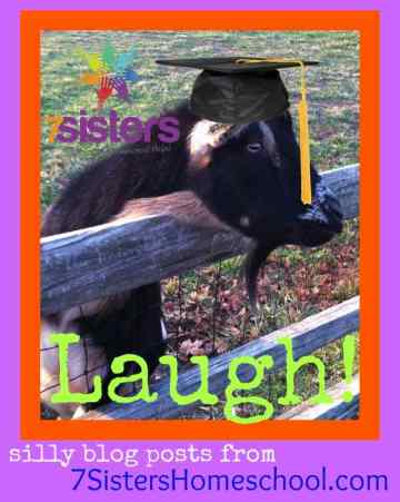 Homeschool Community: Let us help you laugh! Silly blog posts from 7SistersHomeschool.com
