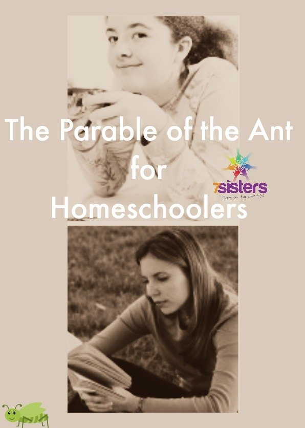 Parable of the Ant for Homeschoolers from 7SistersHomeschool.com