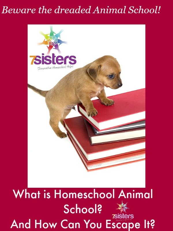 What is Homeschool Animal School? and How Can You Escape It?7SistersHomeschool.com
