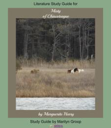 Misty of Chincoteague Middle School Literature Study Guide from 7SistersHomeschool.com