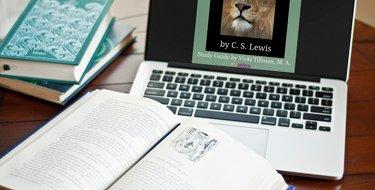 How Many Books Should MY Homeschool High Schooler Read?